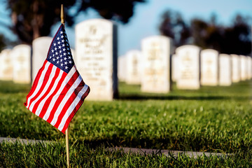 Memorial Day Grave